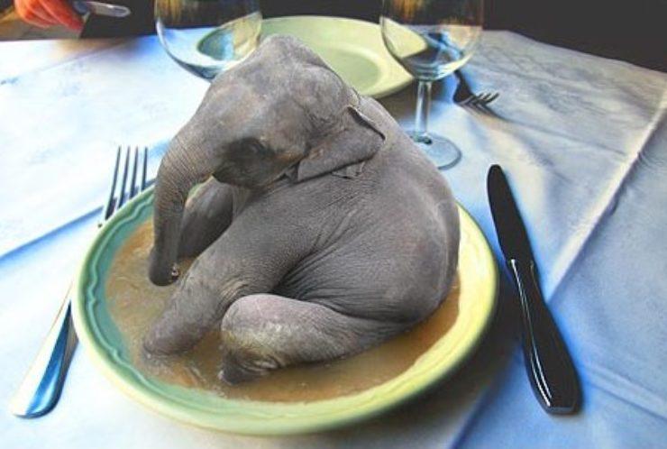 Kuidas elevant ära süüa, veisest rääkimata…