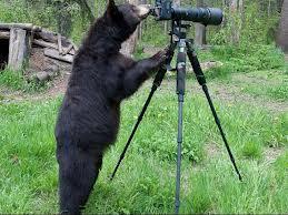 karu kaameras