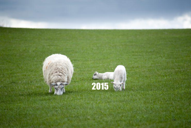 9+1 asja, mis hakkavad 2015. aastal juhtuma