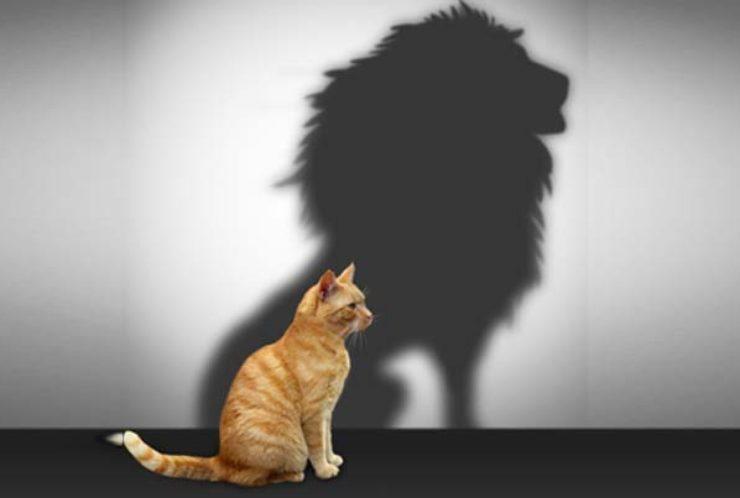 Enesekindlus – kuidas seda päriselt kasvatada